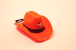 Шляпа NY6276