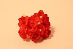 Цветы бумажные FP647