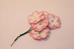 Цветы бумажные FR6564
