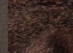 Ткань мохер густой MG17038
