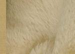 Ткань мохер густой MG16582