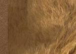 Ткань мохер длинный MD25276