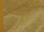Ткань мохер густой MG20283