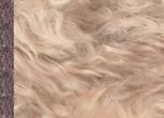 Ткань мохер кудрявый длинный MR40461