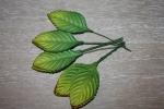 Листья HL572
