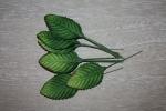 Листья HL577