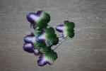 Листья HL578