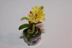 Цветок в горшке FT844