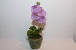 Цветок в горшке FV830