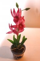 Цветок в горшке FV831