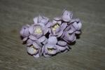 Цветы бумажные FG281