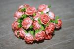 Цветы бумажные FN5562