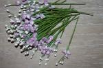 Цветы бумажные FK288