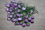 Цветы бумажные FN928