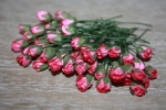 Цветы бумажные FN924