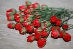 Цветы бумажные FN923
